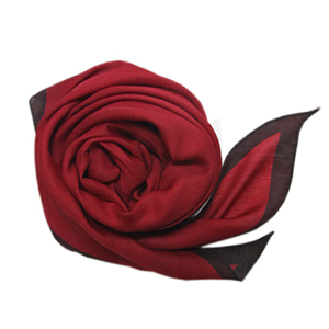 Er color combination Silk scarf